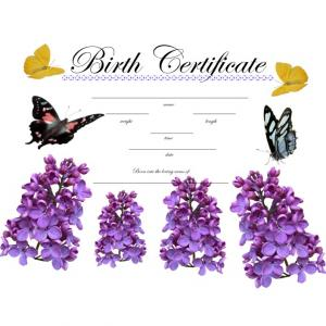 Birth Certificate Keepsake
