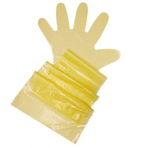 YELLOW Shoulder Length Glove pair