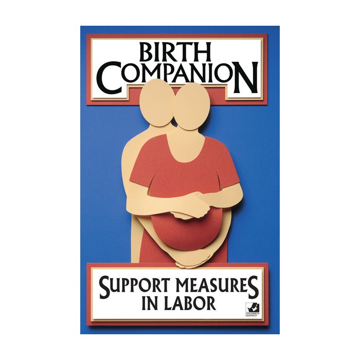 Birth Companion Booklet