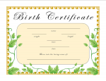 Birth Certificates and Printers